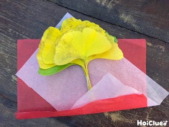 イチョウの束を花紙で包む様子