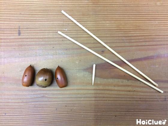 どんぐりと竹ひごの写真