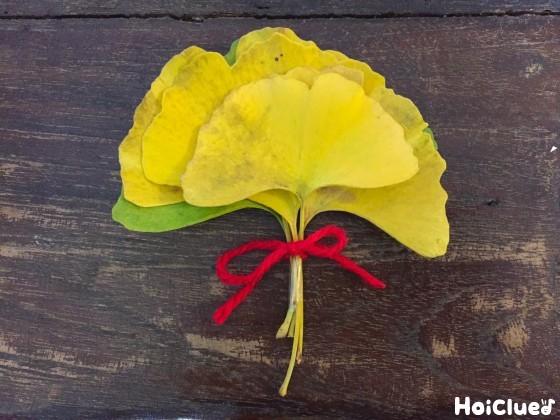 イチョウの葉を毛糸で束ねた写真