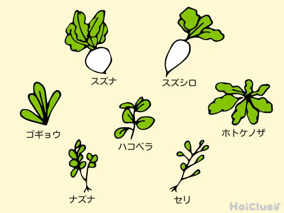 七草のイラスト