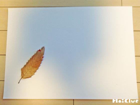 画用紙に葉っぱをつけた写真