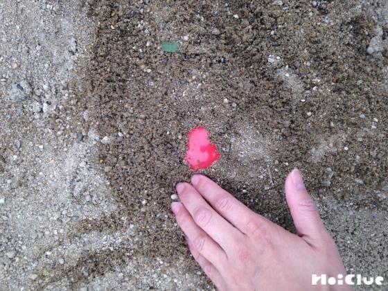 砂に隠している写真