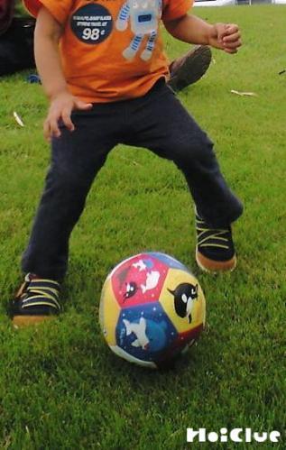 ボール遊びしている写真