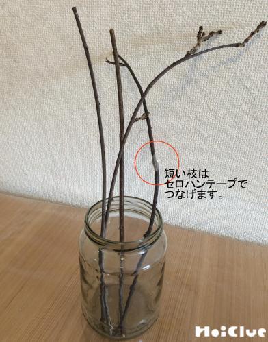 空き瓶に木の枝をいれている写真