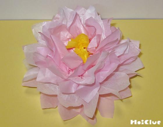 一枚ずつ折りあげて花のようにした写真
