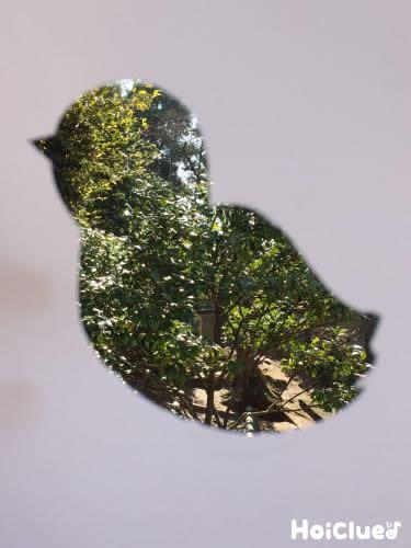 鳥の形にくり抜いた画用紙に木々の風景をはめる様子