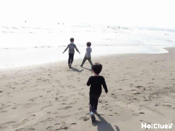 海辺をお散歩している写真