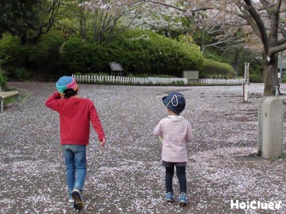 ピンクの花のそばをお散歩している写真
