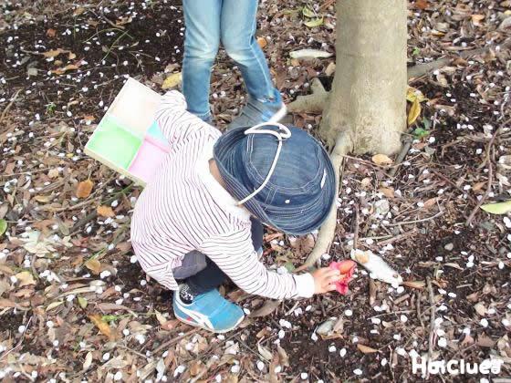 外で葉っぱを探している様子の写真