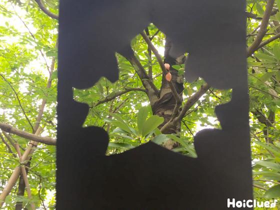 くり抜いた画用紙を木に向けて見ている写真