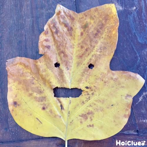 落ち葉に目と鼻の穴を作った写真