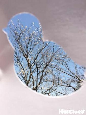 鳥の形に切り抜いた画用紙でみた景色の写真