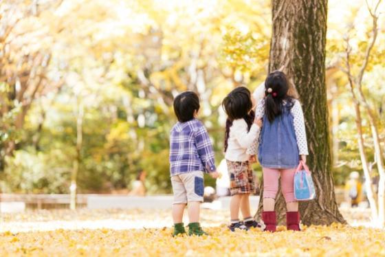 木を見上げる子どもたちの写真