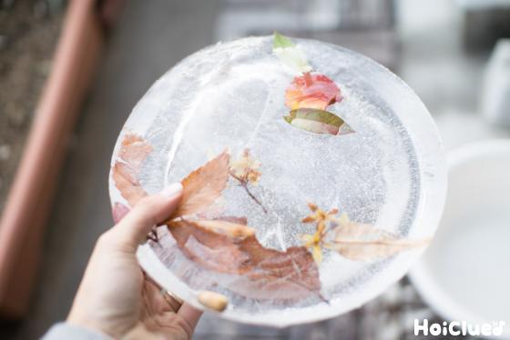 【工作コラム】冬季限定!氷のケーキ〜素材/水と葉っぱ