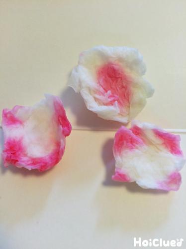 周りをピンクに染めたティッシュと中心だけ染めたティッシュ