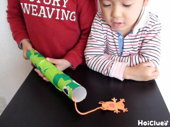 トイレットペーパの芯の中へ紐のついたカエルをセットする様子