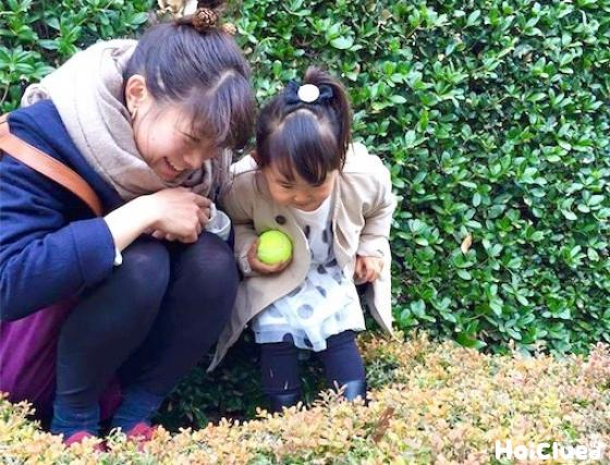 保育士と子どもの写真