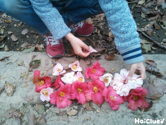 拾った椿を地面に並べている子どもの様子