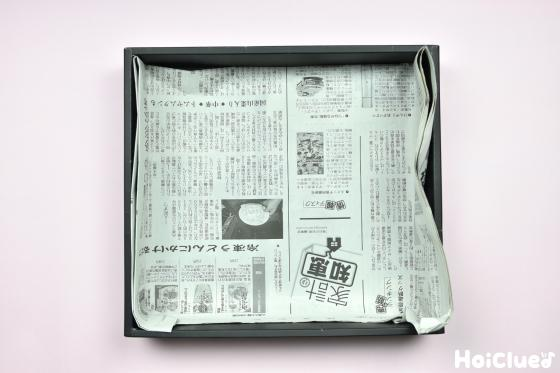 空き箱に新聞紙を敷いた写真