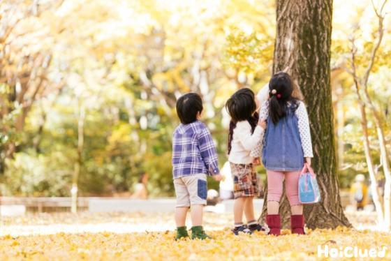 木を見上げる3人の子ども