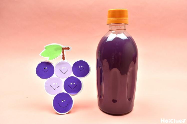 画用紙のぶどうと紫色の水の入ったペットボトル