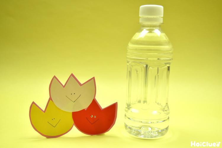 チューリップと水の入ったペットボトルの写真