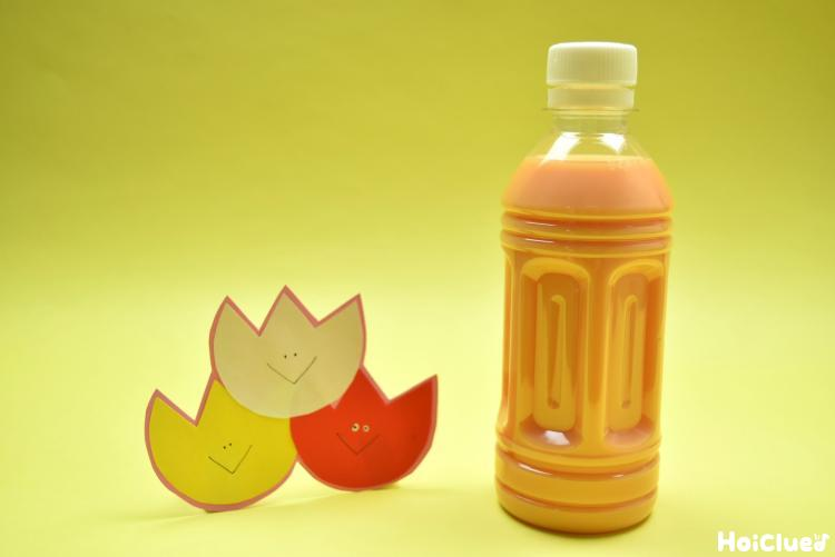 チューリップとオレンジ色の水の入ったペットボトルの写真