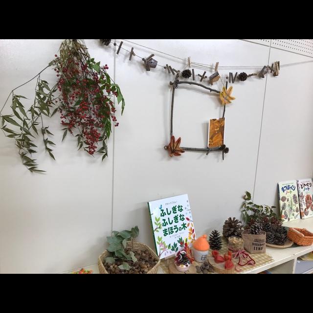 【アプリ投稿】木の実 自然物