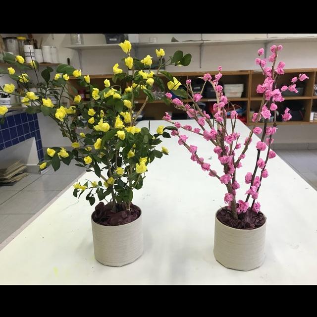 【アプリ投稿】ひな壇のお花 〜桃の花と、黄色い花〜