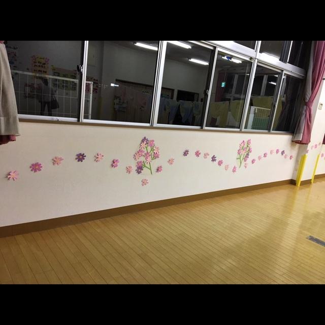 【アプリ投稿】壁にコスモス