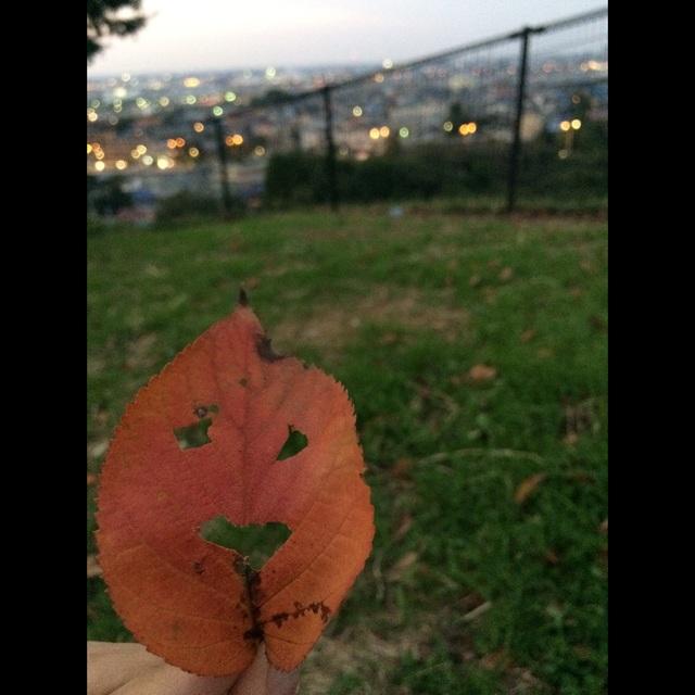 【アプリ投稿】落ち葉でオバケ。