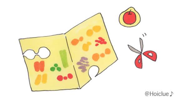 チラシからフルーツを切り抜いたイラスト