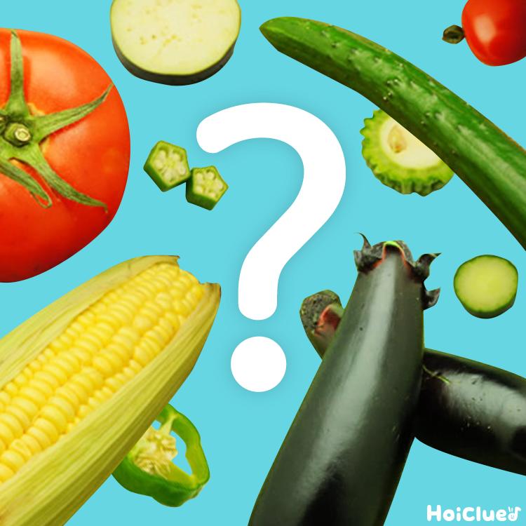 夏野菜のヒミツ〜おもしろ実験食育クッキング〜