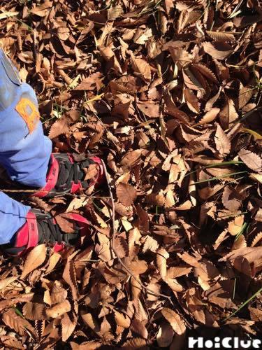 落ち葉を踏む子どもの足