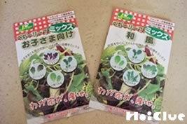 袋に入った野菜の種の写真