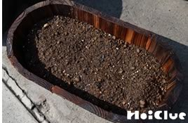土の入ったプランターに種を蒔いた様子