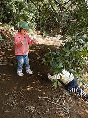 子どもが自然の中に二人でいる写真
