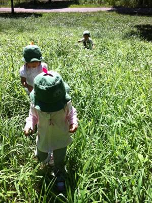 子どもたちが自然の中で歩いている写真