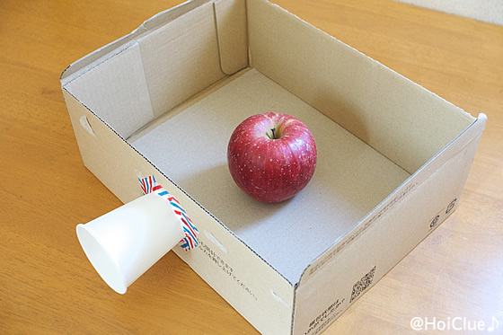 段ボールの中にりんごを置いた写真