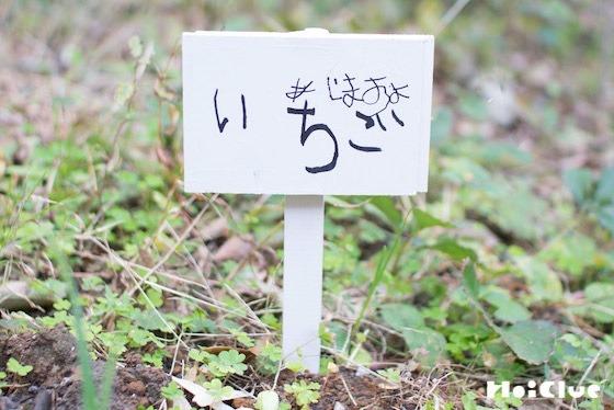 【工作コラム】植物の看板を作ろう!〜素材/木片〜
