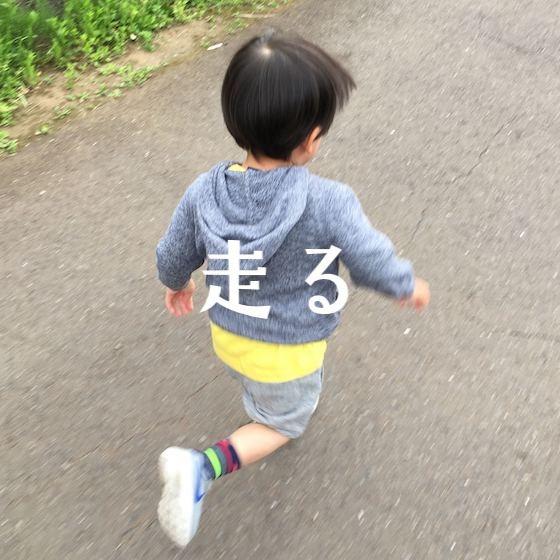 「走る」〜こどもの姿(興味・関心)から楽しむ〜