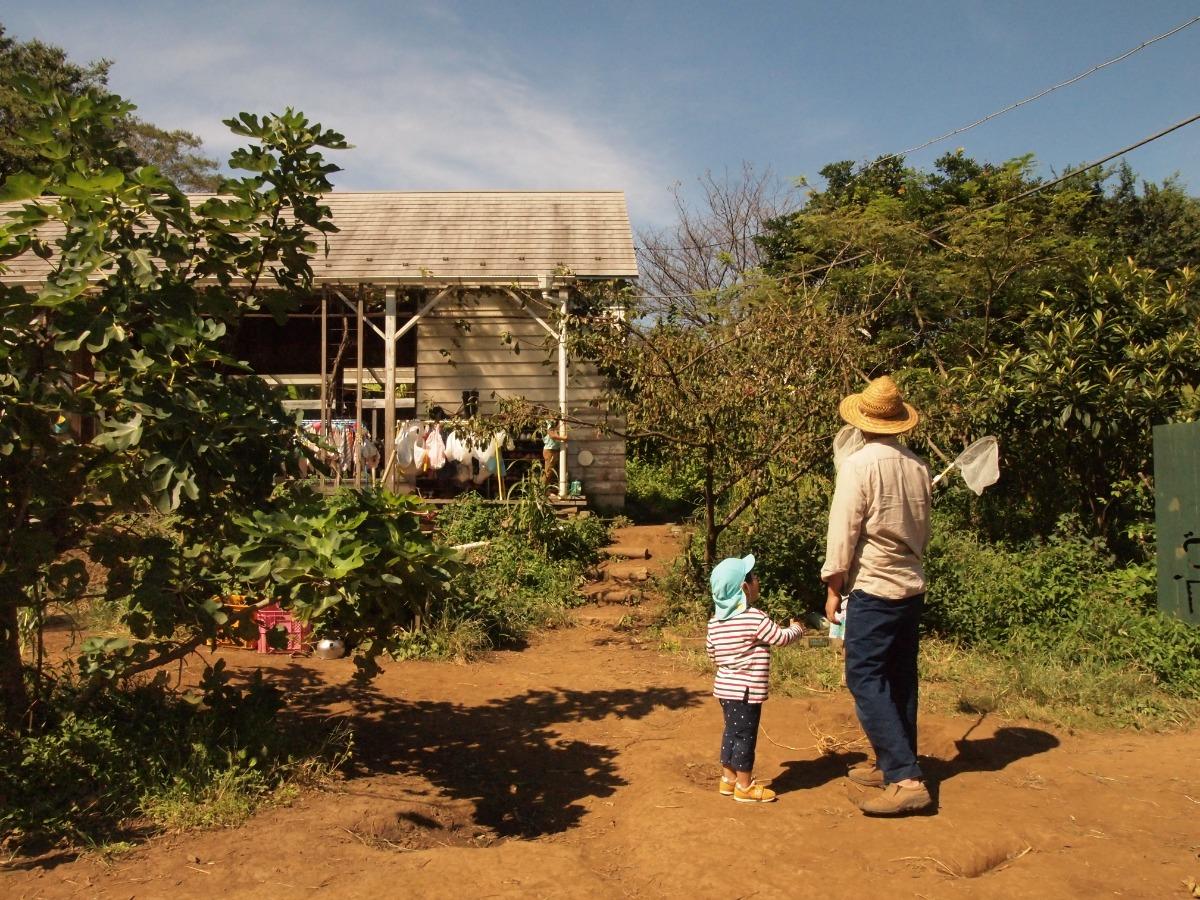 「保育は風景をつくる仕事。保育者は原風景のひとつ。」日常を大切にする、ごかんのもりの在り方。