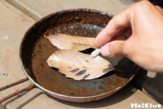【自然遊び】ナガミヒナゲシでペッパーステーキ!?〜素材/ ナガミヒナゲシの実〜