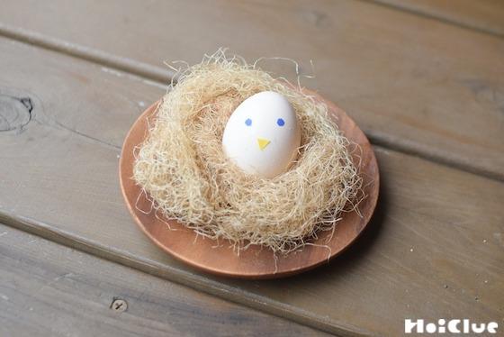 【自然遊び】とうもろこしのヒゲで鳥の巣をつくろう!〜素材/ とうもろこしのヒゲ〜