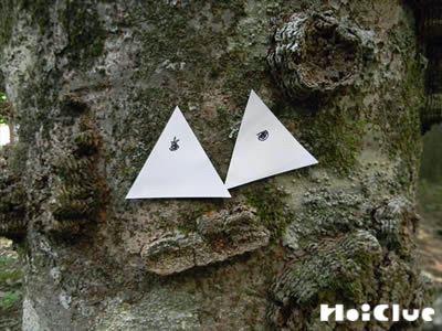 目を描いた三角の紙を木に貼った写真