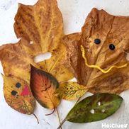 落ち葉で顔を作ろう!〜いろんな表情が楽しめる落ち葉遊び〜