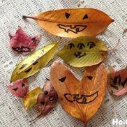見て触れて感じて!秋の自然素材から広がる遊び13選