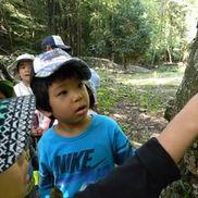 森の福笑い〜身の周りの木々に親しむあそび〜