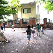 「生命性に触れる体験を」ー岩屋こども園アカンパニ(京都府 京都市)