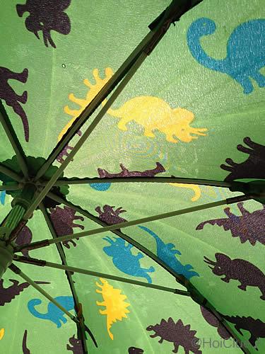 傘の内側の写真